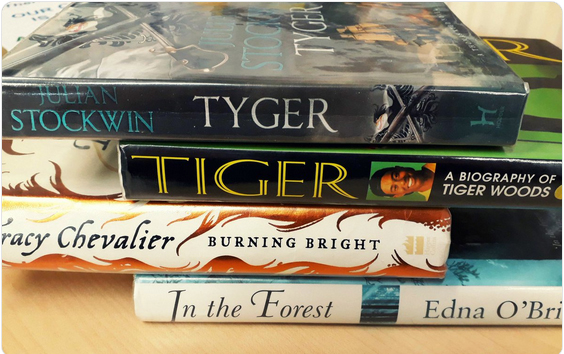 A stack of books, with the titles Tyger, Tiger, Burning Bright, and In The Forest.